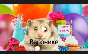 С днем рождения Вероника. Скачать короткое видео бесплатно.