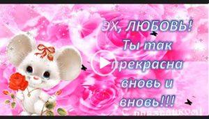 Поздравить Любовь с днем рождения. Видео открытки с днем рождения на телефон. Для Любы.