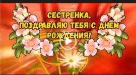 С днем рождения сестренке. От Путина. Скачать видео.