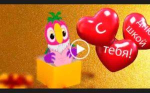 Прикольное видео поздравление с днем рождения от попугая Кеши.