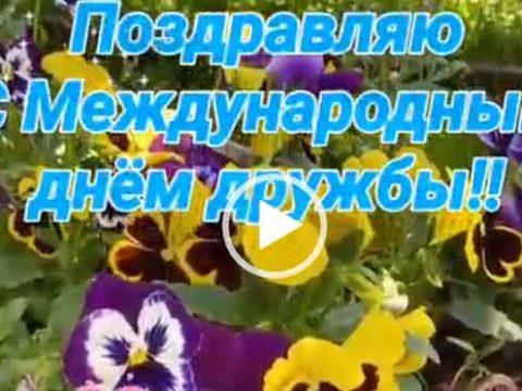Видео открытка С днем дружбы скачать бесплатно.