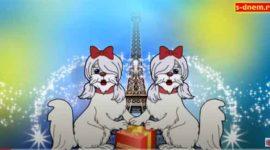 Музыкальное видео поздравление с днем рождения от собачек. Скачать бесплатно.
