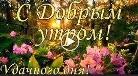 С Добрым утром, удачного дня! Красивое пожелание на утро.